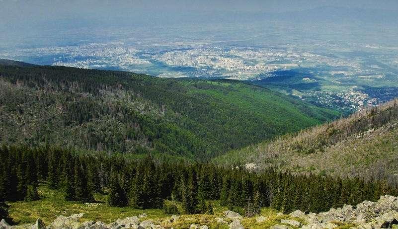 bistrishko-branishte-vitosha-bulgaria