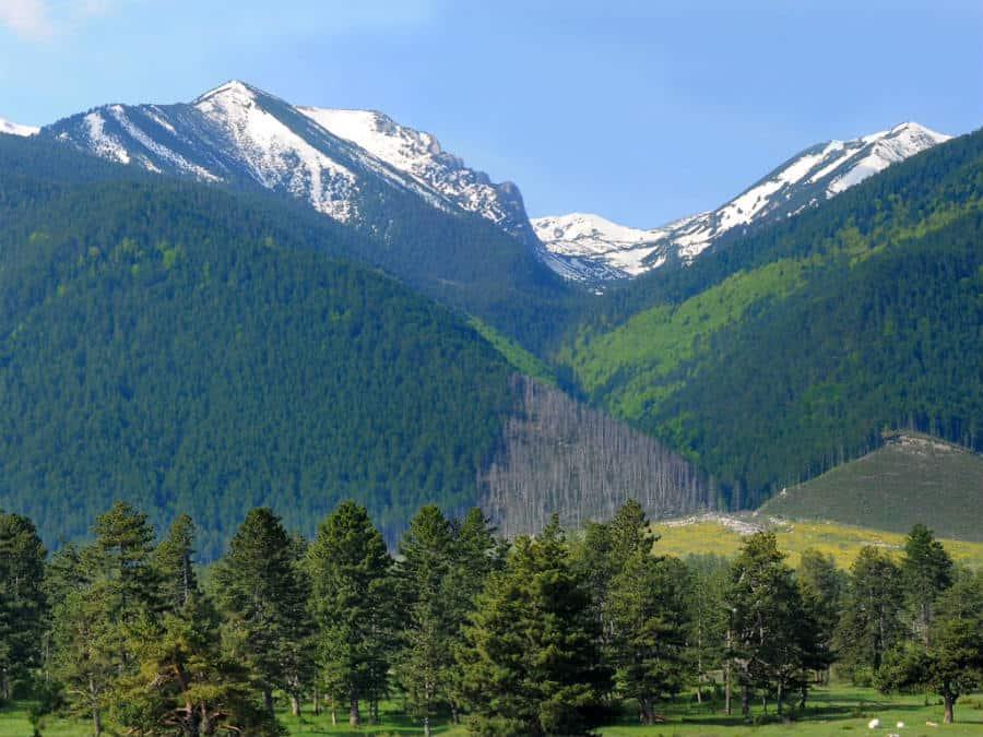 montana-pirin-vistas